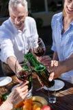 Vidrios y botellas que tintinean del grupo de personas durante comida campestre Fotos de archivo libres de regalías