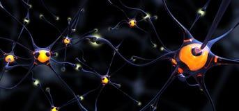 Vidriosas di Neuronas Fotografia Stock