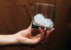 Vidro com gelo à disposição Foto de Stock Royalty Free