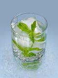 Vidro com gelo e hortelã de água Imagem de Stock