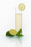 Vidro com limonada fria Fotos de Stock Royalty Free