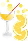 Vidro com suco e partes de laranja Imagens de Stock Royalty Free