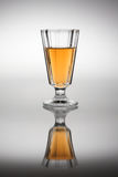 Vidro com vinho da ameixa na luz traseira. Fotos de Stock Royalty Free