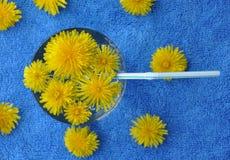 Vidro da água com flores e palha fotografia de stock royalty free