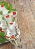 Vidro da água de soda com hortelã e framboesa Fotografia de Stock