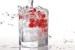 Vidro da água, do gelo e de airelas vermelhas com splas Imagens de Stock Royalty Free