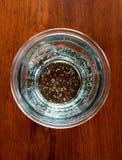 Vidro da água gasosa Imagens de Stock