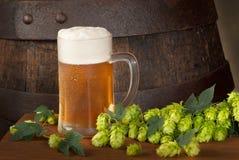 Vidro da cerveja Fotografia de Stock