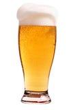 Vidro da cerveja Foto de Stock