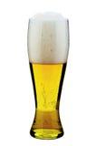 Vidro da cerveja Fotos de Stock