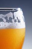 Vidro da cerveja clara fria Fotografia de Stock