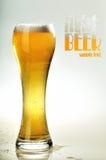 Vidro da cerveja clara fria Foto de Stock