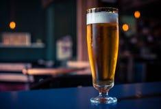 Vidro da cerveja em uma tabela de madeira foto de stock