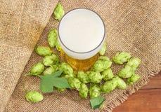 Vidro da cerveja entre de cones de lúpulo em um pano de saco Fotografia de Stock Royalty Free