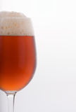 Vidro da cerveja fria Imagem de Stock Royalty Free