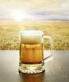 Vidro da cerveja fria na natureza imagem de stock