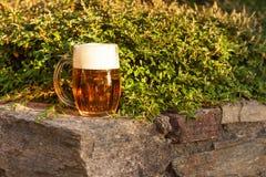 Vidro da cerveja na pedra Celebração do jardim Cerveja em uma parede de pedra do jardim Foto de Stock Royalty Free