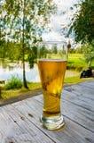 Vidro da cerveja na tabela de madeira contra o fundo da natureza do inverno imagens de stock royalty free
