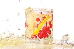 Vidro da gim, do gelo, do limão e da airela com respingo Fotografia de Stock