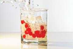 Vidro da gim, do gelo e de airelas vermelhas com respingo Fotografia de Stock Royalty Free