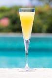 Vidro da mimosa Fotografia de Stock Royalty Free
