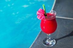 Vidro da piscina fresca da bebida do suco do batido da melancia Fotos de Stock