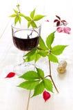 Vidro das folhas do vinho vermelho e da uva Fotografia de Stock Royalty Free