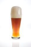 Vidro de cerveja com cerveja no luminoso Fotografia de Stock Royalty Free