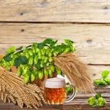 Vidro de cerveja com lúpulos e cevada Foto de Stock Royalty Free