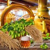 Vidro de cerveja com lúpulos e cevada Fotos de Stock Royalty Free
