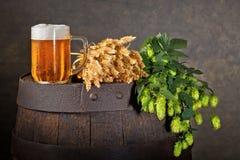 Vidro de cerveja, cones de lúpulo e trigo Fotos de Stock Royalty Free
