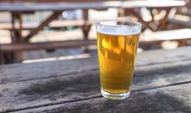 Vidro de cerveja do ofício foto de stock royalty free