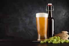 Vidro de cerveja no fundo escuro imagem de stock