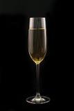 Vidro de Champagne Foto de Stock Royalty Free