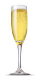 Vidro de Champagne foto de stock