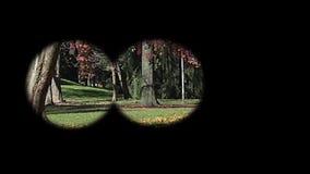 Vidro de espião video estoque