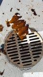 Vidro de garrafa quebrado afiado pelo dreno oxidado da tempestade no parque de estacionamento imagem de stock royalty free