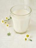 Vidro de leite Fotografia de Stock