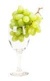 Vidro de vinho da uva Fotos de Stock