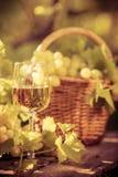 Vidro de vinho e uvas da videira Foto de Stock