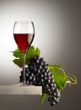 Vidro de vinho tinto Foto de Stock