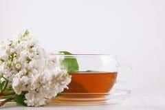 Vidro do chá quente, decorado com as flores lilás brancas na tabela de madeira branca Imagens de Stock