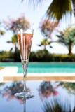 Vidro do champanhe Fotografia de Stock