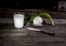 Vidro do leite, da mussarela e da cebola em uma tabela de madeira velha Foto de Stock