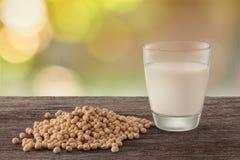 Vidro do leite e do feijão de soja de soja no fundo do jardim Imagens de Stock Royalty Free