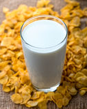Vidro do leite e dos cereais Imagens de Stock Royalty Free