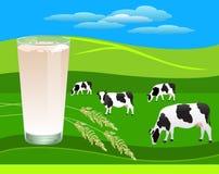 Vidro do leite fresco Imagem de Stock Royalty Free