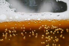 Vidro do macro da cerveja Foto de Stock Royalty Free