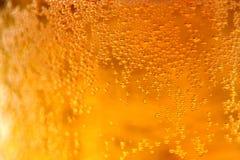 Vidro do macro da cerveja Foto de Stock