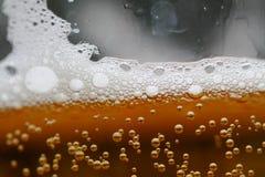 Vidro do macro da cerveja Fotos de Stock